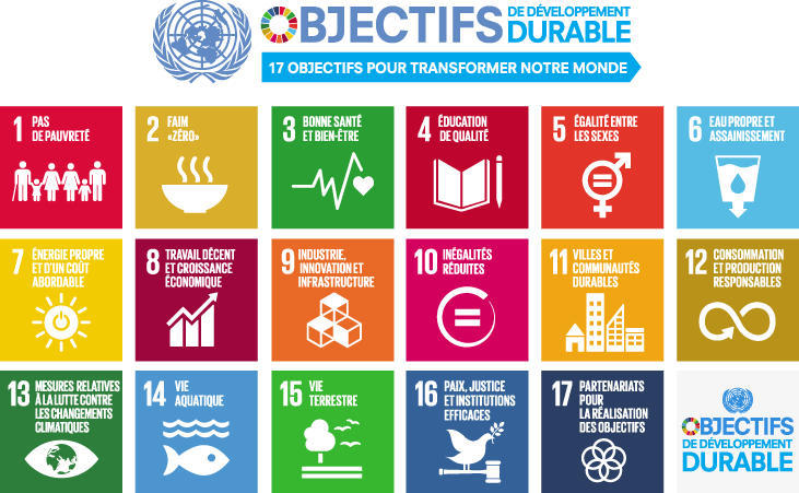 french_SDG_17goals_poster_all_languages_with_UN_emblem